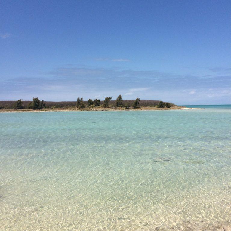 Photo de l'océan très clair avec au long le bout d'une île.